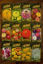 Dnes mi dorazila dalsia varka semienok objednanych z eshopu a pomaly si zacinam uvedomovat, ze to pestovanie kvetov ma bude stat viac, ako keby som si ich kupila hotove :D