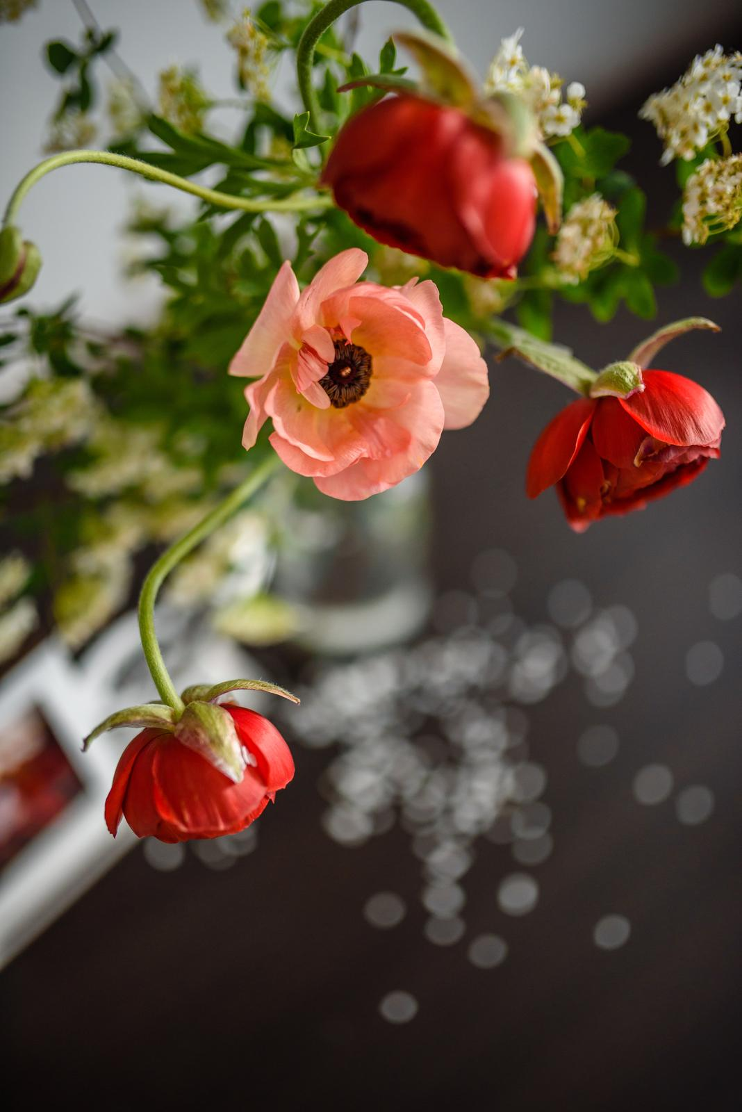 """Moje kvetinové aranžmány - """"Peach blush"""" ranunculus - vyzerá skôr ako divý mak, pretože nie je plnokvetý. Jeho slabosť sa však stala jeho dominantou :-)"""
