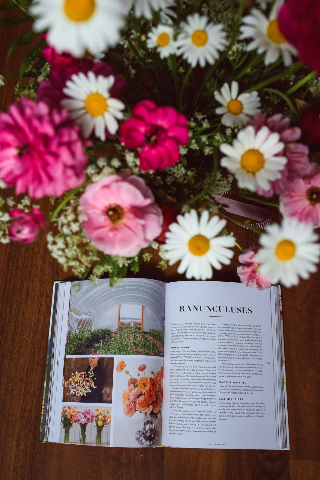 Vo víre kvetov... - Ranunculusy sa nedajú nemilovať :-)