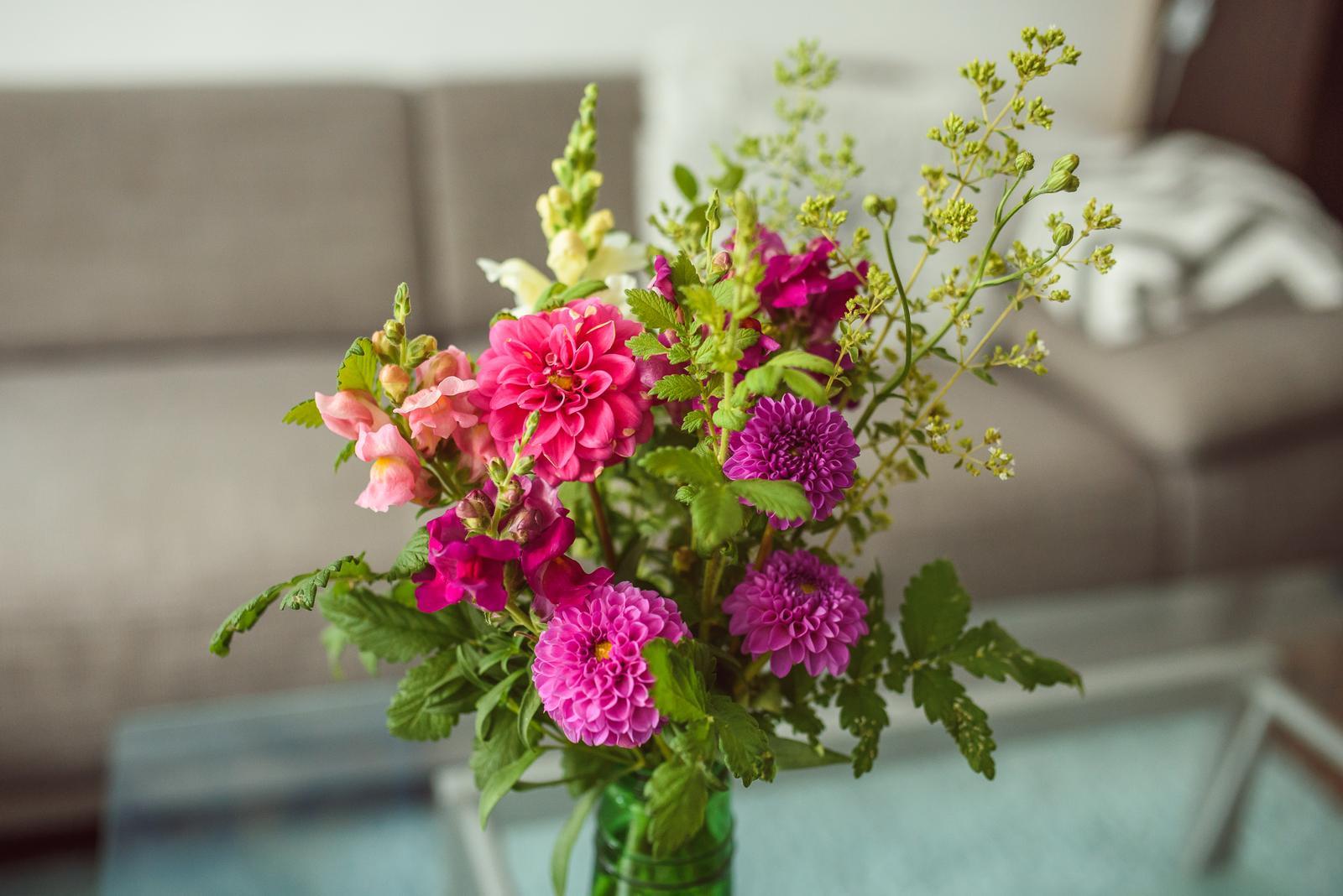 Moje kvetinové aranžmány - Dálie, papuľky, oregano, repík