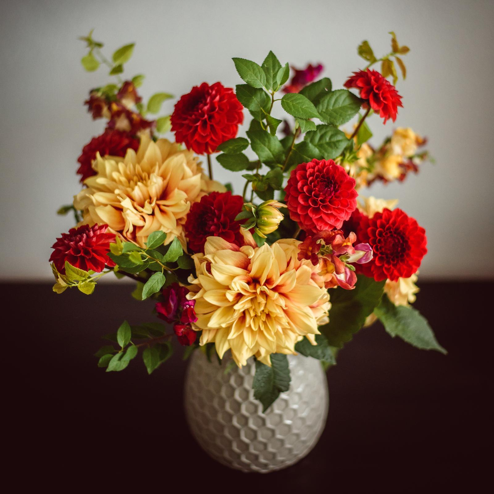 Moje kvetinové aranžmány - Dahlia Dazzling Magic + Red Cap, papulky a vyhonky z jablone