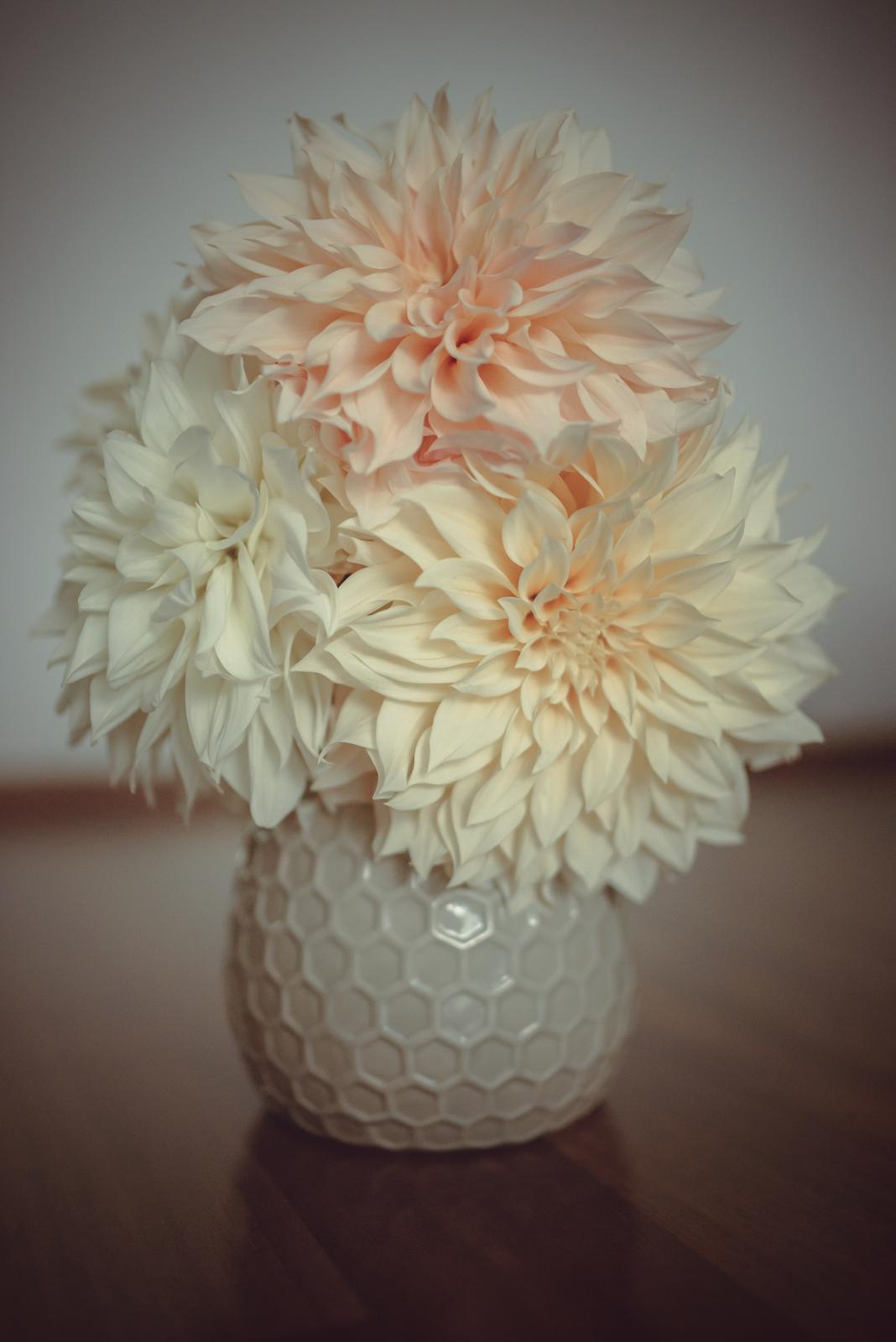 Moje kvetinové aranžmány - Púdrové trio :-)