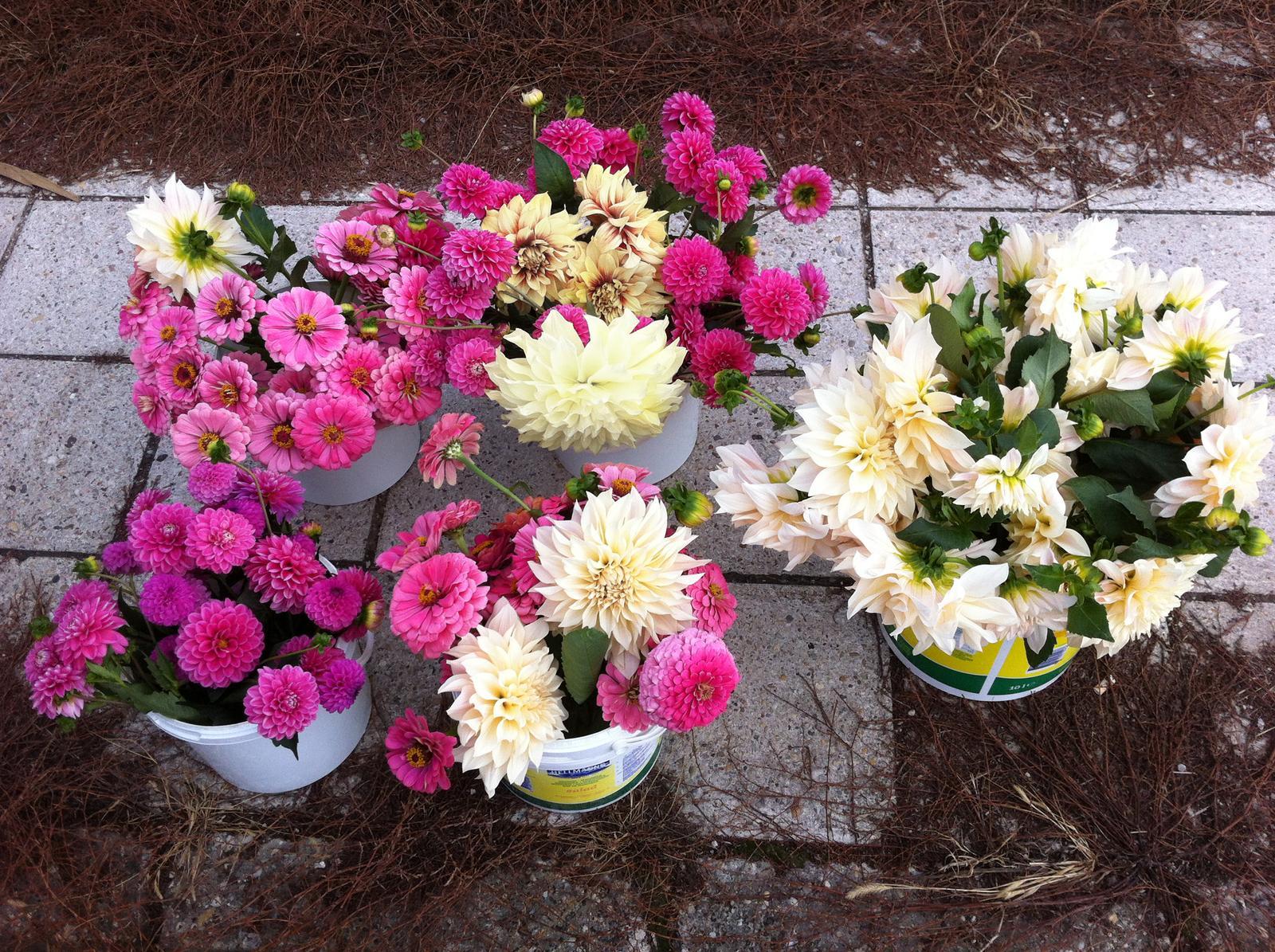 Vo víre kvetov... - Do mojej svadby mám ešte čas, tak táto nádielka kvetov ozdobí svadičku nevestičke @marisha1982 , ktorá má svadbičku tento piatok  :-) Ďakujem za tvoj záujem, dúfam, že kvietky vydržia