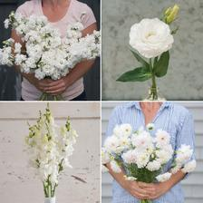 Svadobná biela v podaní fialy, eustomy, papuliek a krasuľky :-)