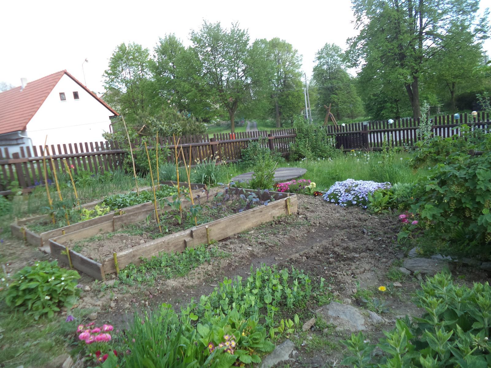 Zahrádkové - Květen 2017 Naše mladší fotila naše společné dílo - zahrádku jsem převzala před 10 lety. Naše děti tu mají taky svoji zeměplochu k práci i radosti. Před 2 lety tchán vyrobil s pomocí manžela plot. Manžel letos vyrobil provizorní vyvýšené záhonky.