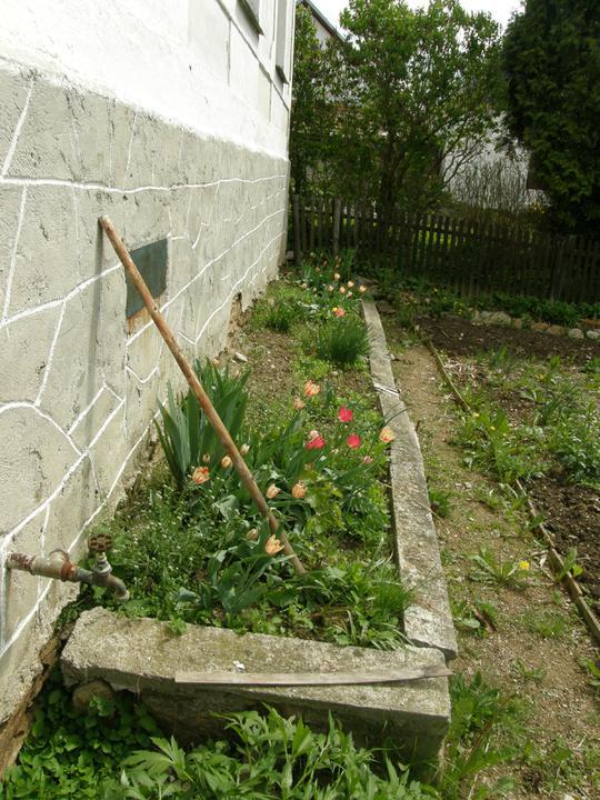 Moje zahrádkové potěšení - květen 2010 - nedobydlený květinový záhonek...