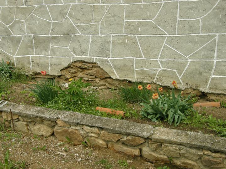 Moje zahrádkové potěšení - květen 2010 - ...sem tam tulipán ještě po bývalích majitelích