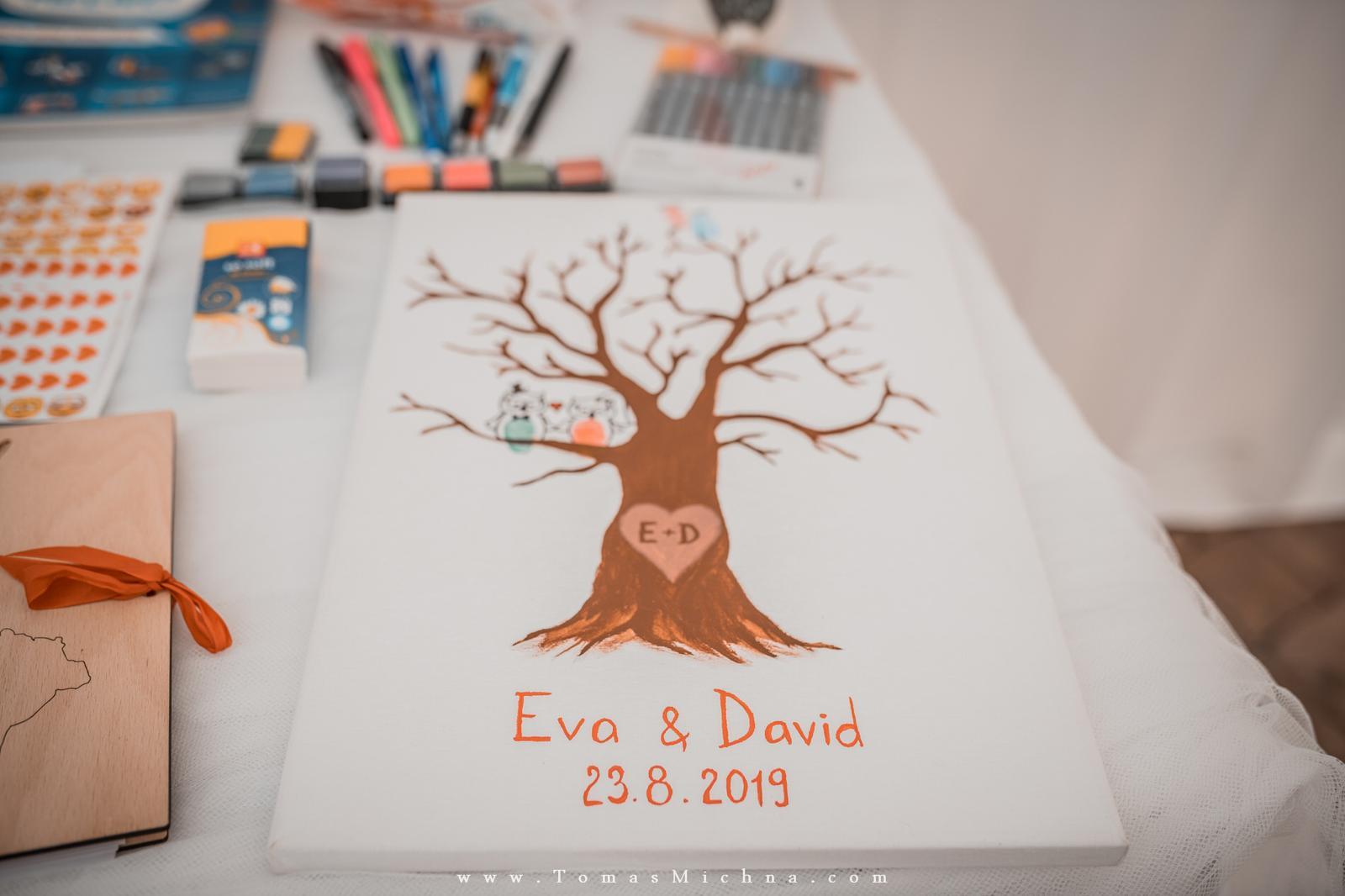 ♥ Eva & David ♥ - Obrázok č. 4