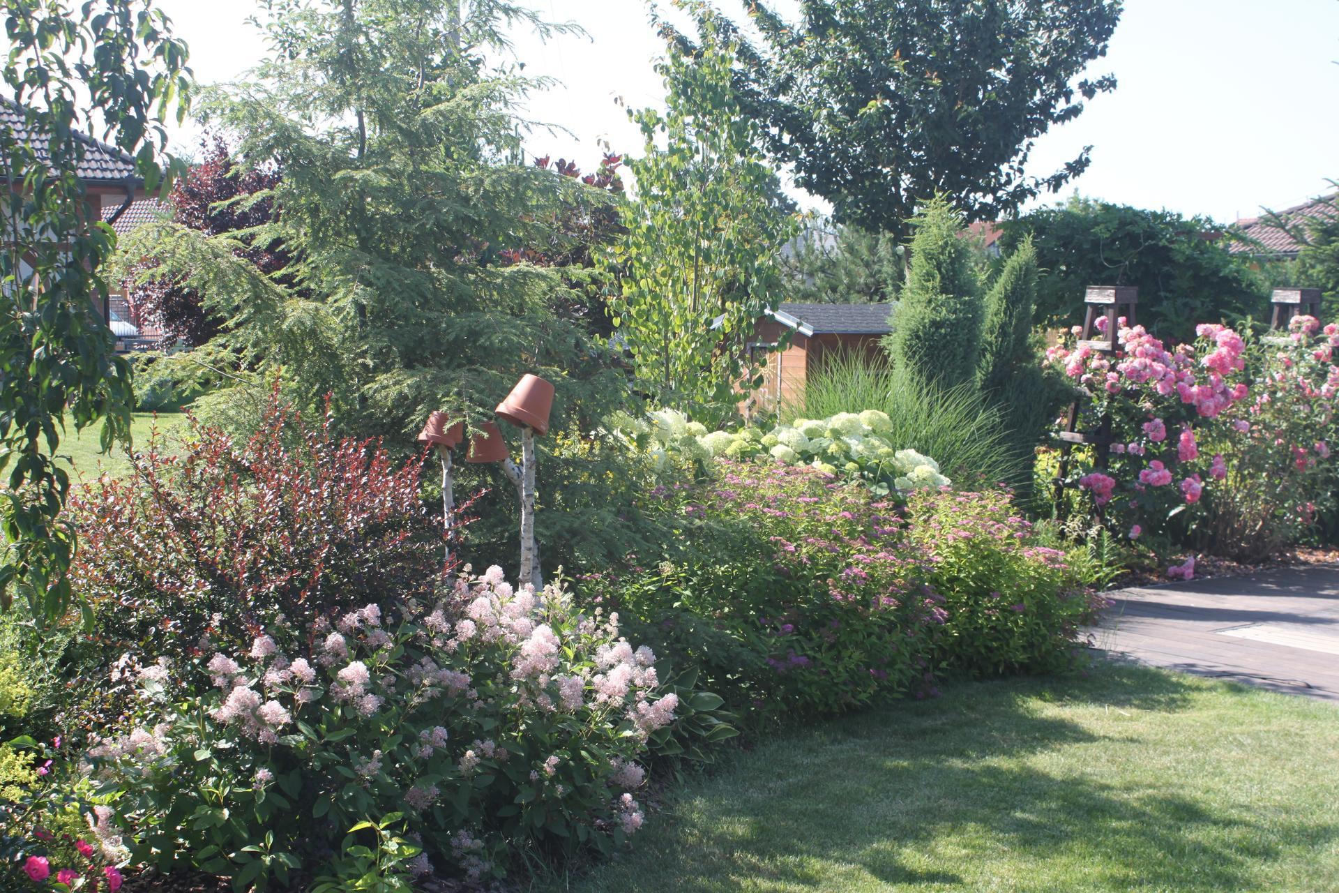 ...Naše zahrada...