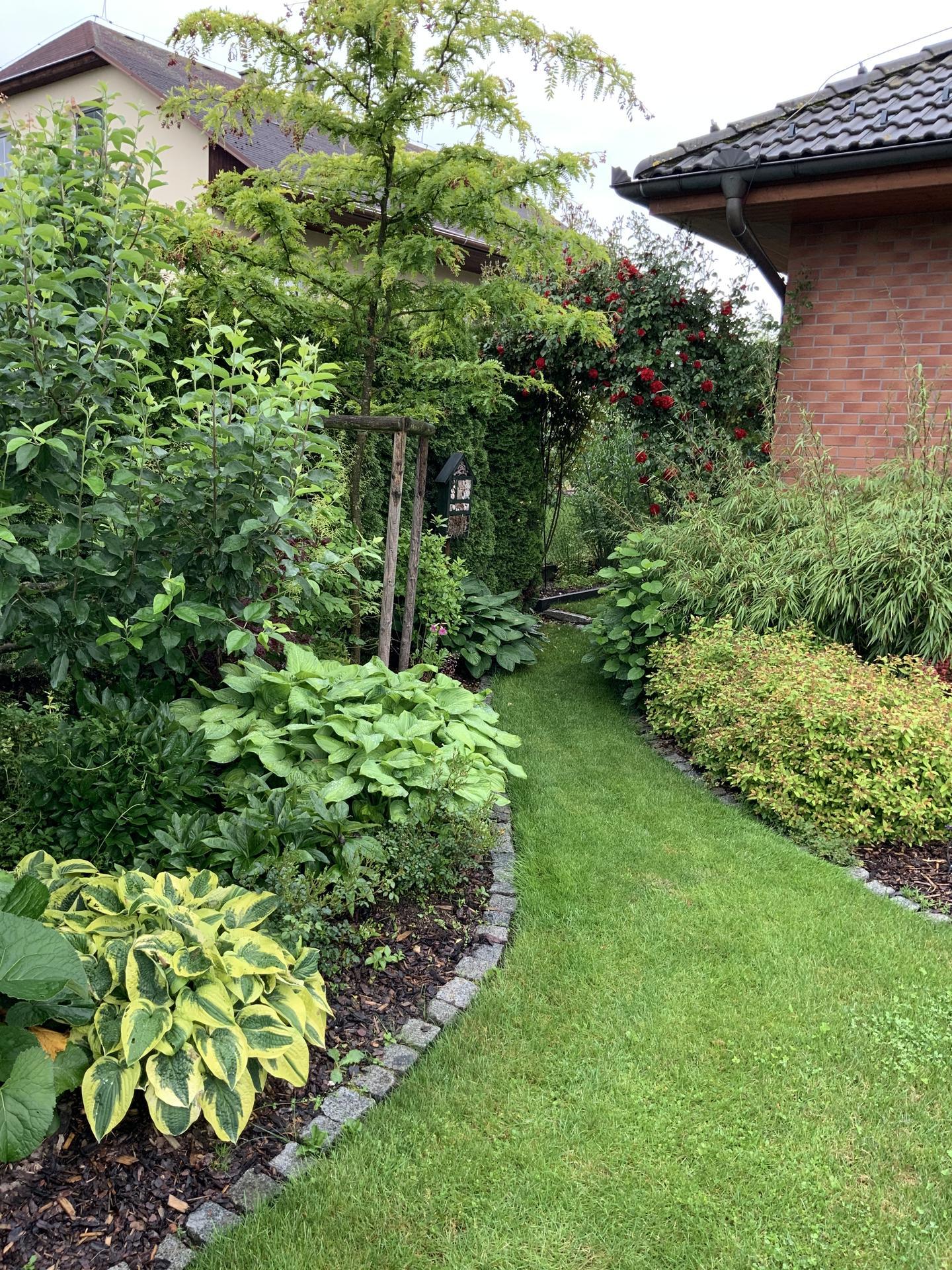 ...Naše zahrada... - Obrázek č. 8