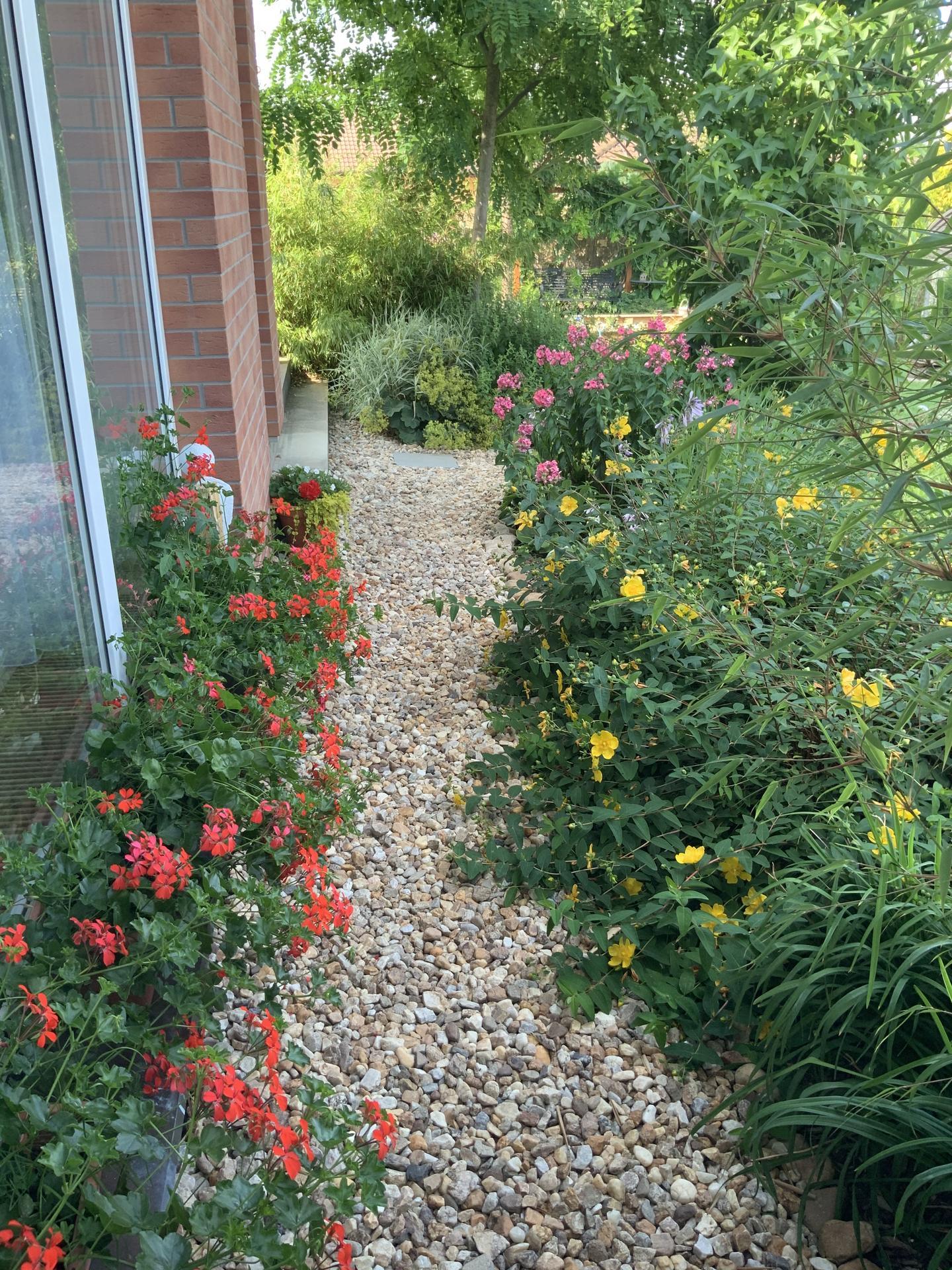 ...Naše zahrada... - Obrázek č. 12