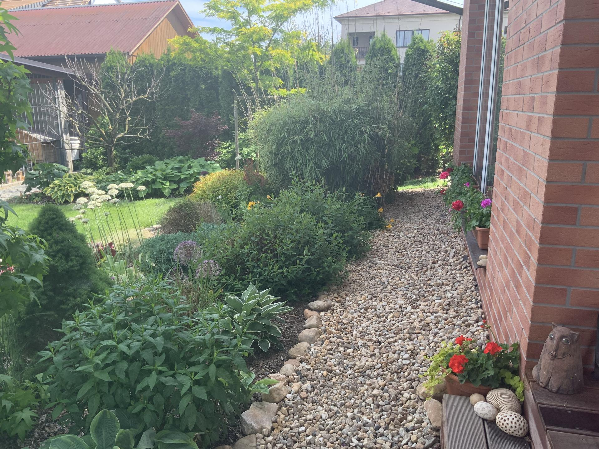 ...Naše zahrada... - Obrázek č. 22