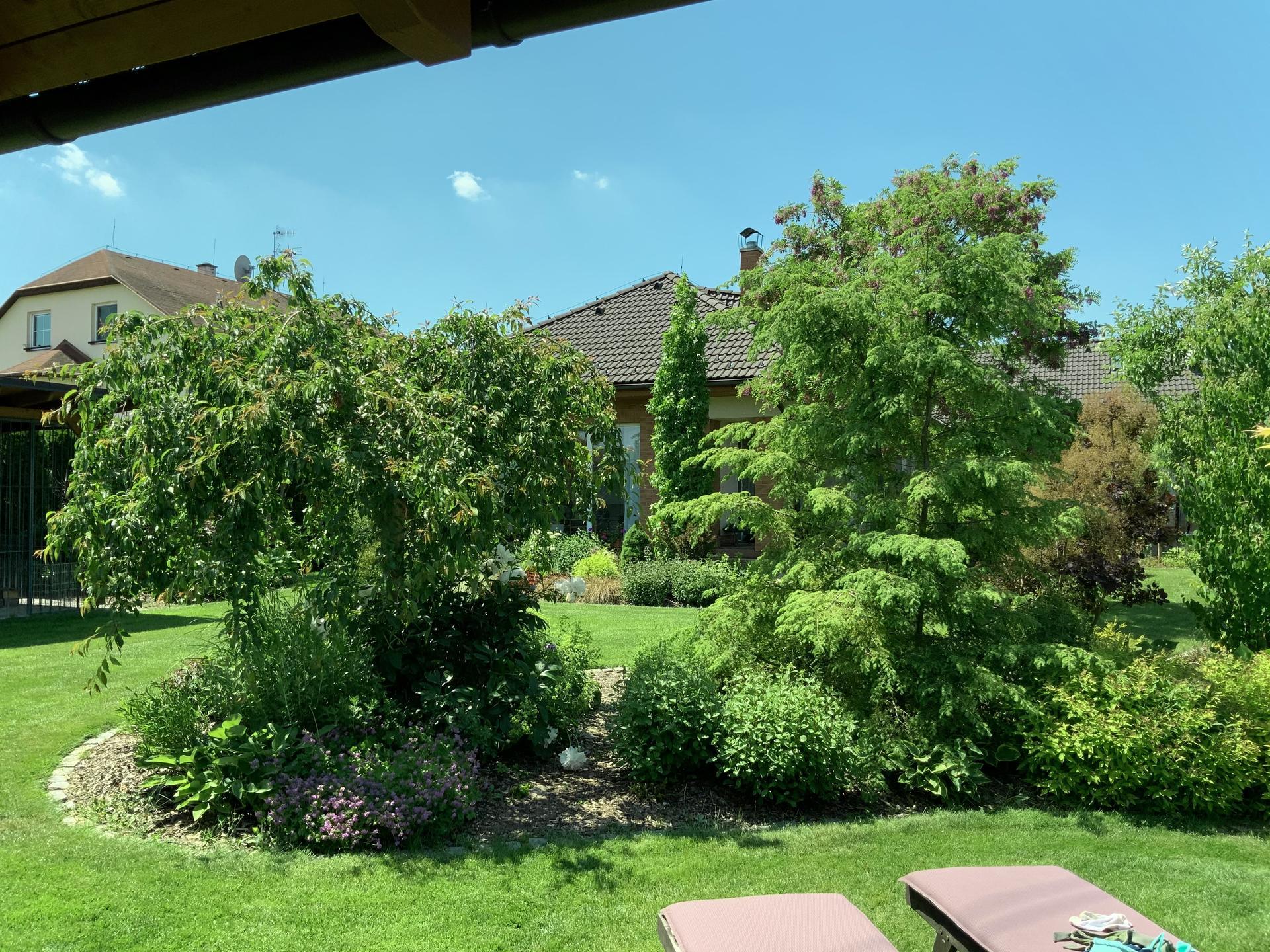 ...Naše zahrada... - Obrázek č. 27