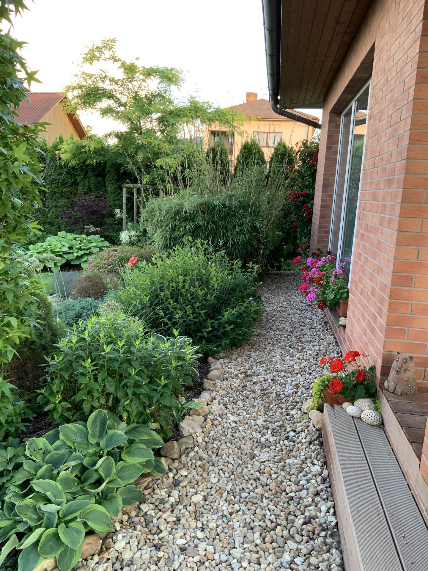 ...Naše zahrada... - Obrázek č. 28