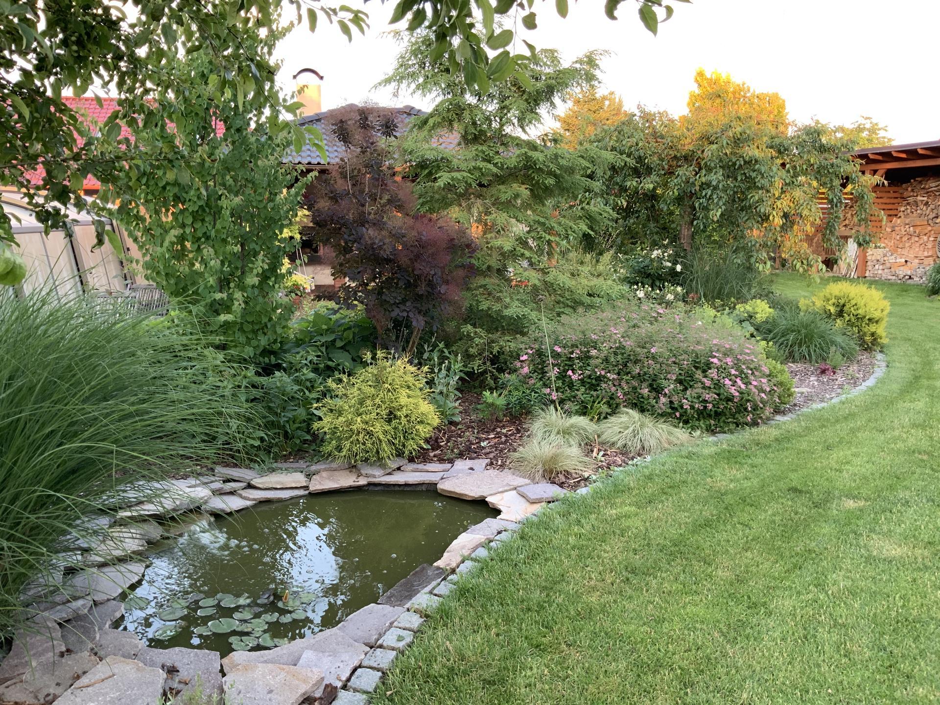 ...Naše zahrada... - Obrázek č. 30
