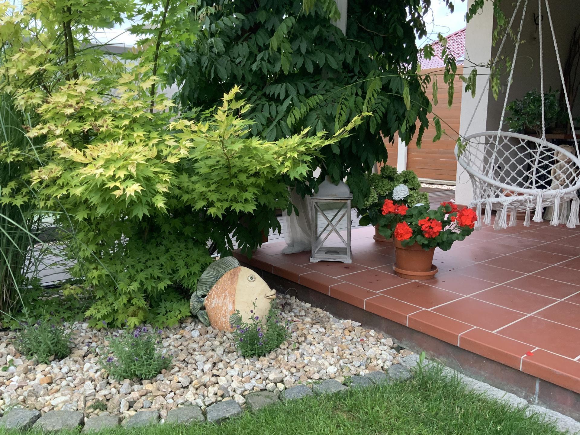...Naše zahrada... - Obrázek č. 43