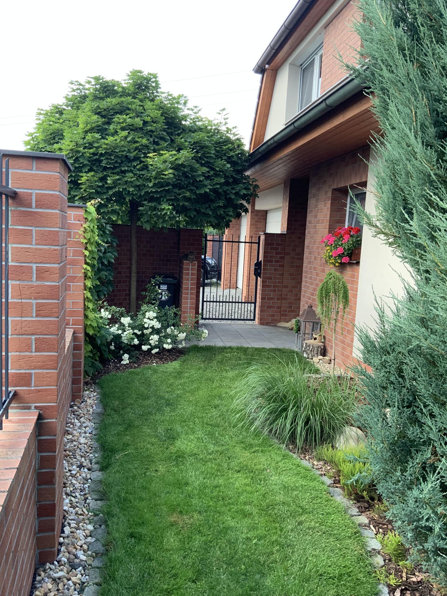 ...Naše zahrada... - Obrázek č. 47