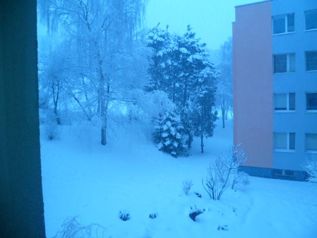 Aj takéto môže byť v Bratislave prebudenie - Obrázok č. 3