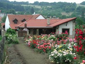 Pension Roseta - zahrada