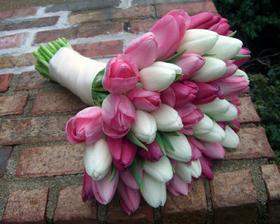 miluju tulipány, jen si nejsem jistá dostupností v září??