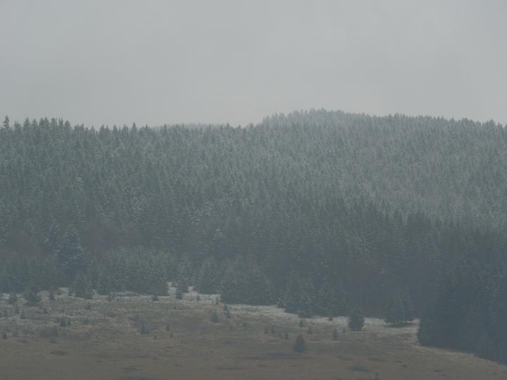 Náš chalupársky sen (Alfa 105) - 2.12.2012 prvý sniežik na obzore