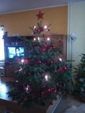 Když jsme se loni touto dobou stěhovali k tchánum tak jsem se už nemohla dočkat letošních Vánoc v nově zrekonstruovaném našem bytečku....nedovedete si představit co to je čekat na další Vánoce čili až 2015...takže dávam foto aspoň  stromečku u tchánu