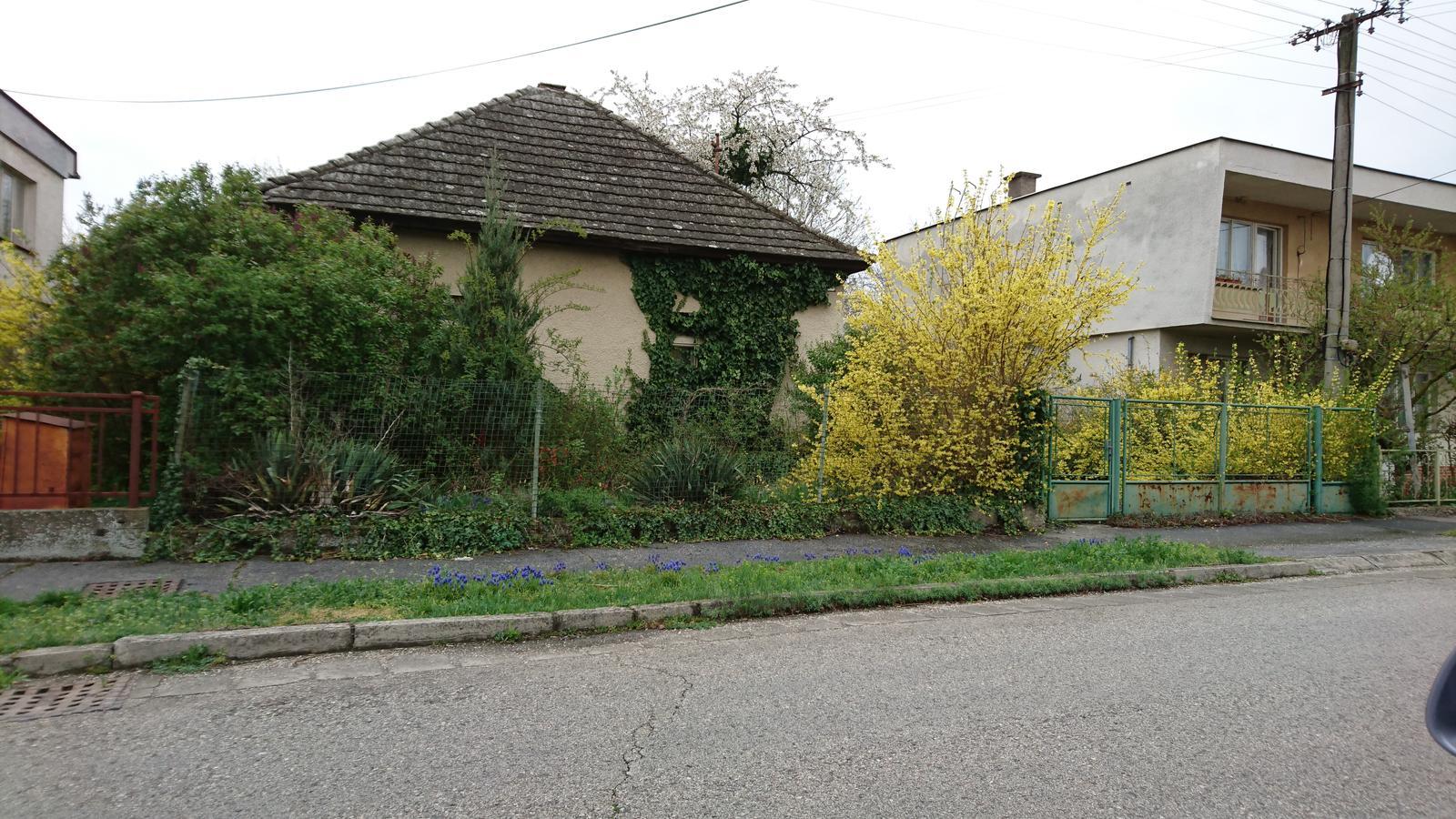 Pozemok + projekt + hruba stavba - Obrázok č. 1