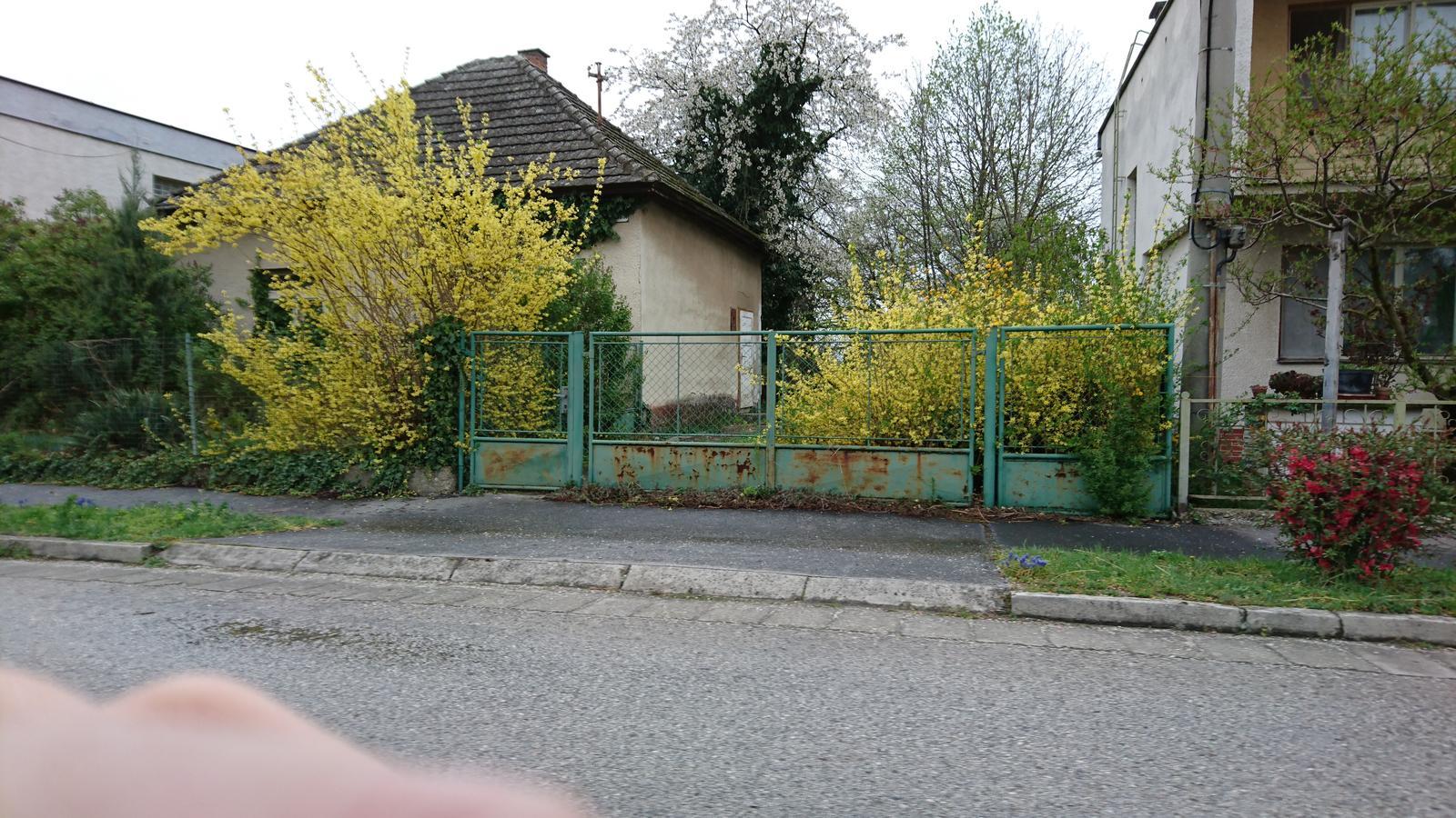 Pozemok + projekt + hruba stavba - Obrázok č. 2