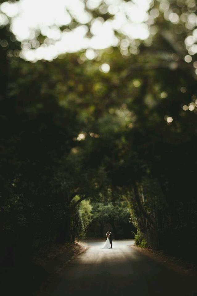 Svatební fotky - inspirace - Obrázek č. 24