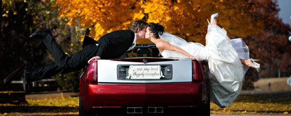 Svatební fotky - inspirace - Obrázek č. 26