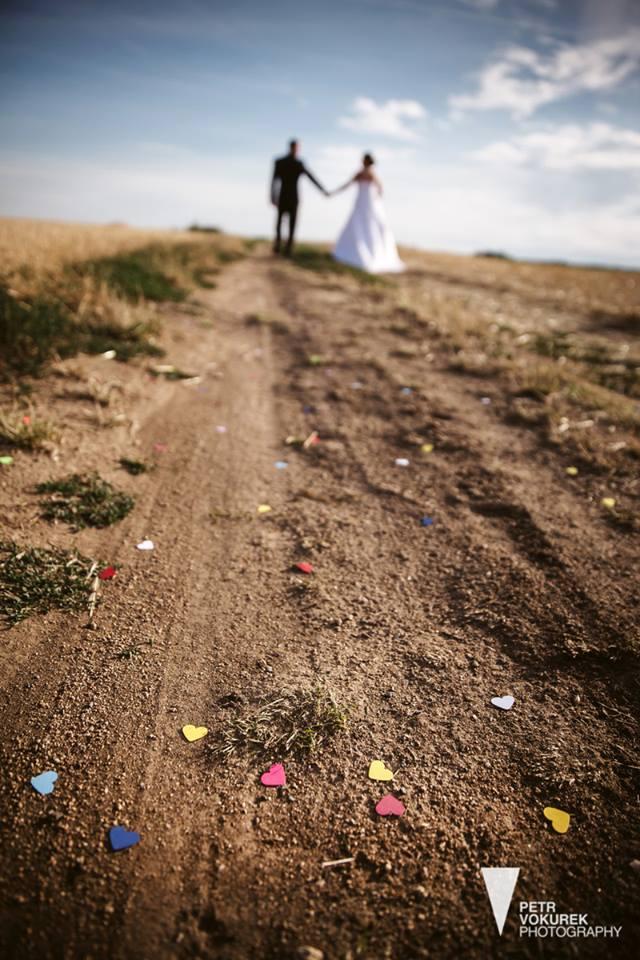 Svatební fotky - inspirace - Obrázek č. 68