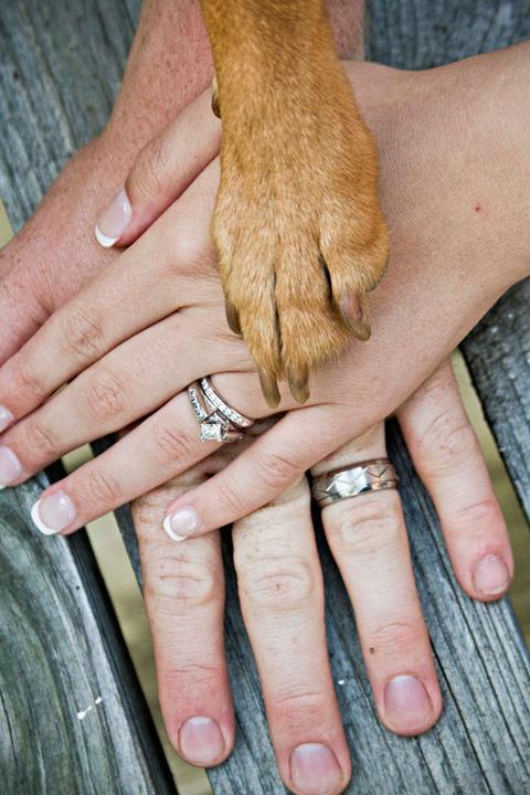 Svatební fotky - inspirace - Obrázek č. 74