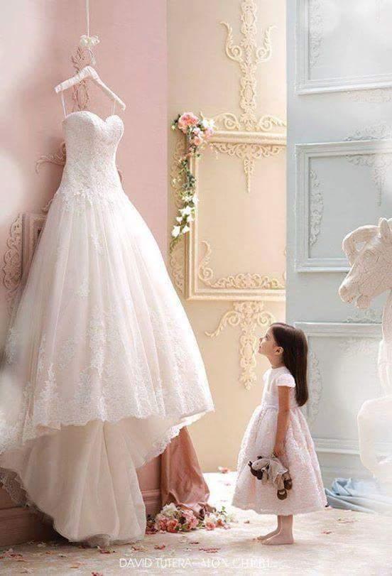Svatební fotky - inspirace - Obrázek č. 98