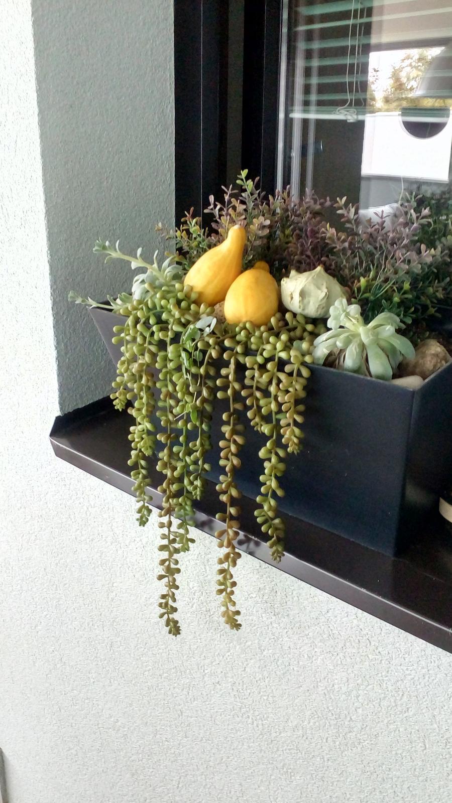 Začínám s podzimními truhlíky... - Obrázek č. 2