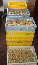 Rozvoz koláču 30.6.2007
