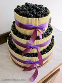 Borůvkovo - ostružinový dort s čokoládovými trubičkami
