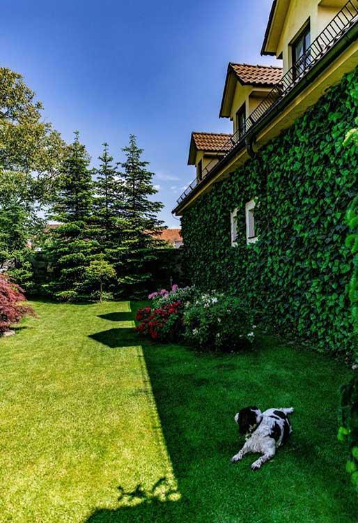 Súťaž Moja záhrada 2021 - Zvolen - Obrázok č. 3