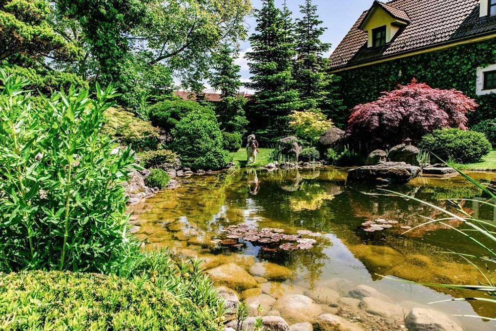 Súťaž Moja záhrada 2021 - Zvolen - Obrázok č. 1