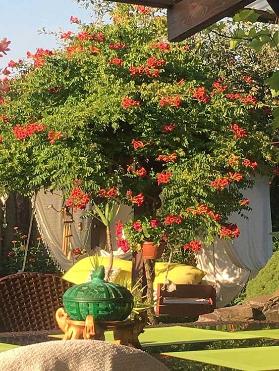 Súťaž Moja záhrada 2021 - Pitelová, okr. Žiar nad Hronom - Obrázok č. 2