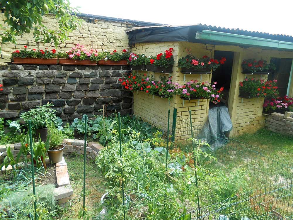 Súťaž Moja záhrada 2021 - Svätý Jur - Obrázok č. 2