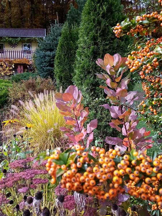Súťaž Moja záhrada 2021 - Uhrovec - Obrázok č. 1