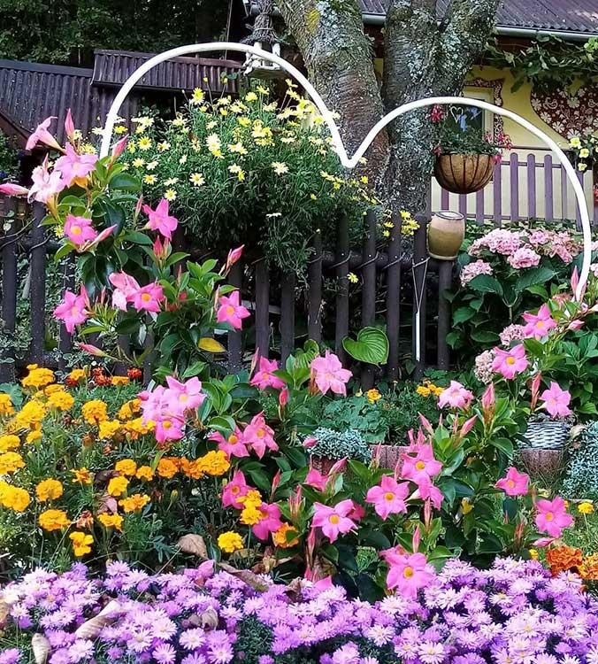 Súťaž Moja záhrada 2021 - Uhrovec - Obrázok č. 3