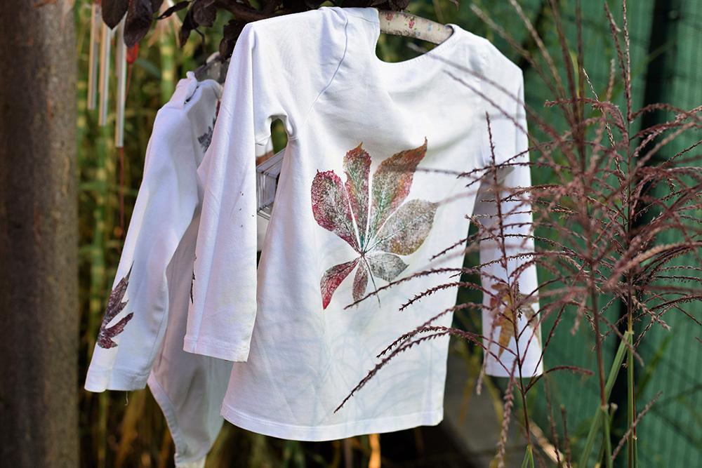 Ako spotrebovať dary záhrady/ Recepty zo záhrady - V tomto recepte sa nevarí, ani nepečie, ale napriek tomu použijeme dary zo záhrady. Vyrobte si originálne jesenné tričká ;) Foto: Martina Töröková, postup: https://www.zahrada.sk/magazine/jesenna-moda-zahradkara-skuste-recept-na-originalny-dizajn