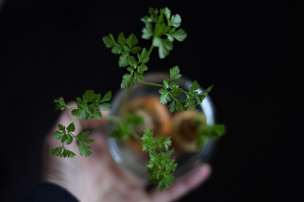 Ako spotrebovať dary záhrady/ Recepty zo záhrady - Petržlenová vňať a tipy, ako ju využiť ;) Foto: Martina Töröková, viac si prečítate tu: https://www.zahrada.sk/magazine/chutna-osozna-petrzlenova-vnat-mat-ju-vzdy-po-ruke-je-hracka