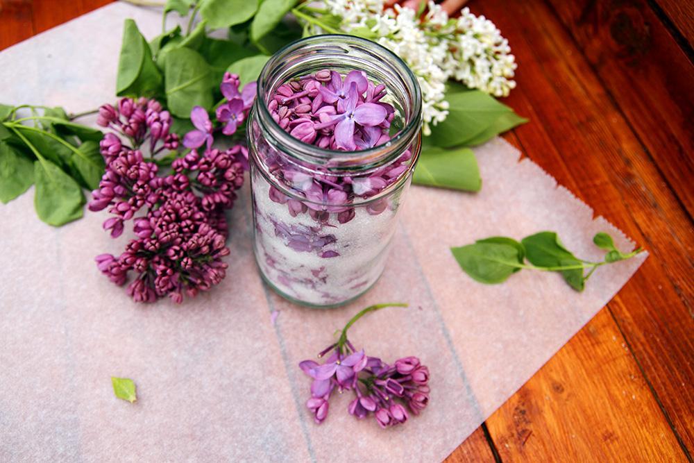 Ako spotrebovať dary záhrady/ Recepty zo záhrady - Orgovánová soľ, recept tu: https://www.zahrada.sk/magazine/vyuzite-poslednu-moznost-nazbierat-si-vonavy-orgovan