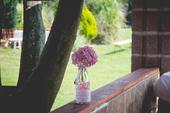 Růžové vázičky,