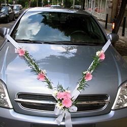 Kačenka a Zdenda (Brandejsovi) 7.7. 2007 - že bych šla do růžové...?