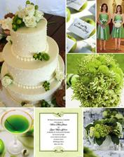 inspirace v zelené 3