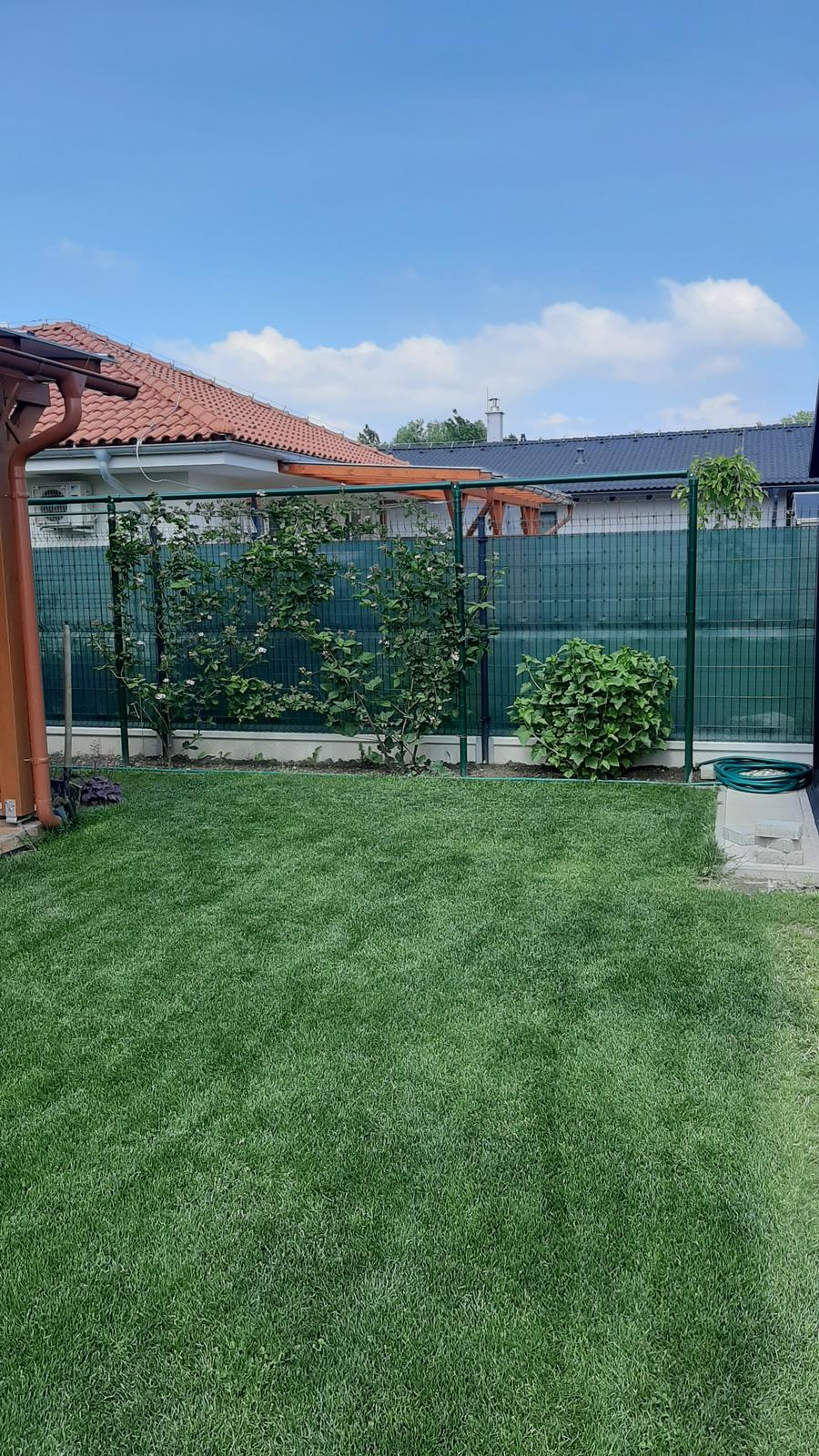 🏠🌞🌺❤🌷 Zahrada a jej dalsi rok...2020 🌱🐞🐛🦋🍓🥕🍅🌺❤ - Manzel musel dorobit konstrukciu na cernice kedze sa velmi rozrastaju...