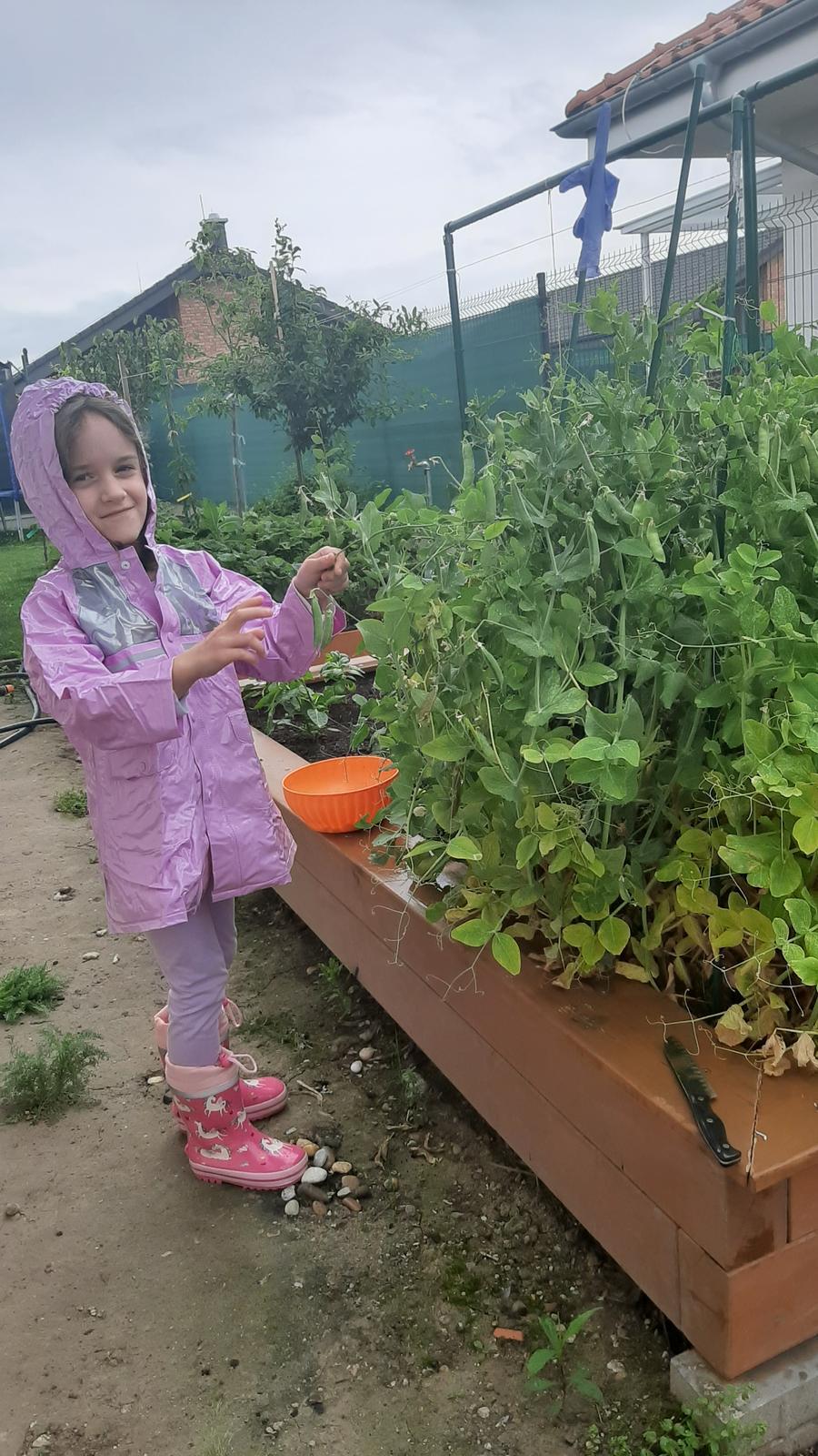 🏠🌞🌺❤🌷 Zahrada a jej dalsi rok...2020 🌱🐞🐛🦋🍓🥕🍅🌺❤ - Moja mala pomocnicka 😃